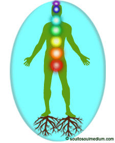 A green colored silhouette of a man in a aqua colored bubble. Beneath each his feet are brown roots growing into the earth. You can see his brightly colored chakra system.