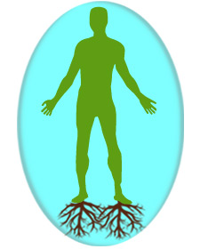 Image of a silhouette of an outline of a green man with brown roots coming from his feet growing downwards, representing a grounded person.